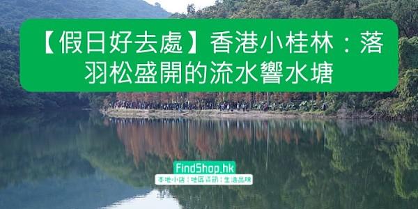 【假日好去處】香港小桂林:落羽松盛開的流水響水塘