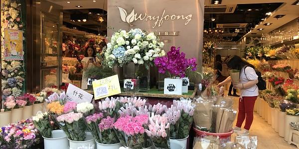 WayFoong 卉豐花業