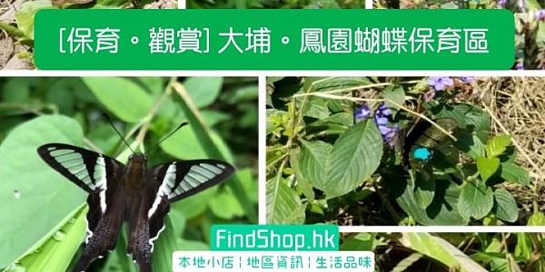 [保育。觀賞] 大埔。鳳園蝴蝶保育區